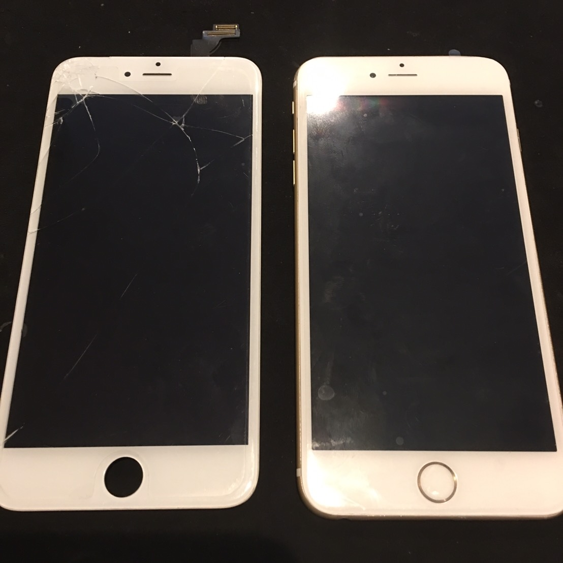5.16 | iphone6plus | パネル交換