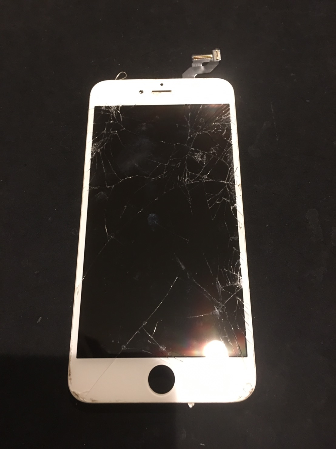 11.15 | iphone6splus | パネル交換